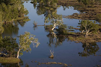 Rinyirru_Lakefield_National_Park