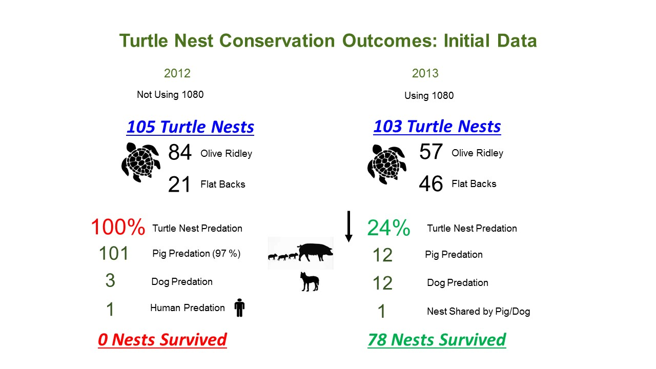 Turtle_Nest_Conservation_Outcomes_Data